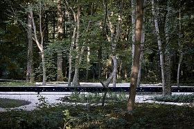 Jardin du 3ème train, forêt de Compiègne<br>Gilles Brusset